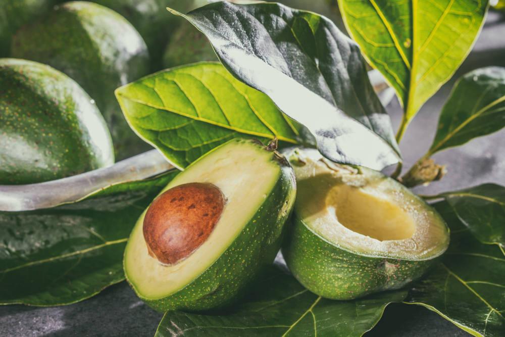avocado dieta fructariana